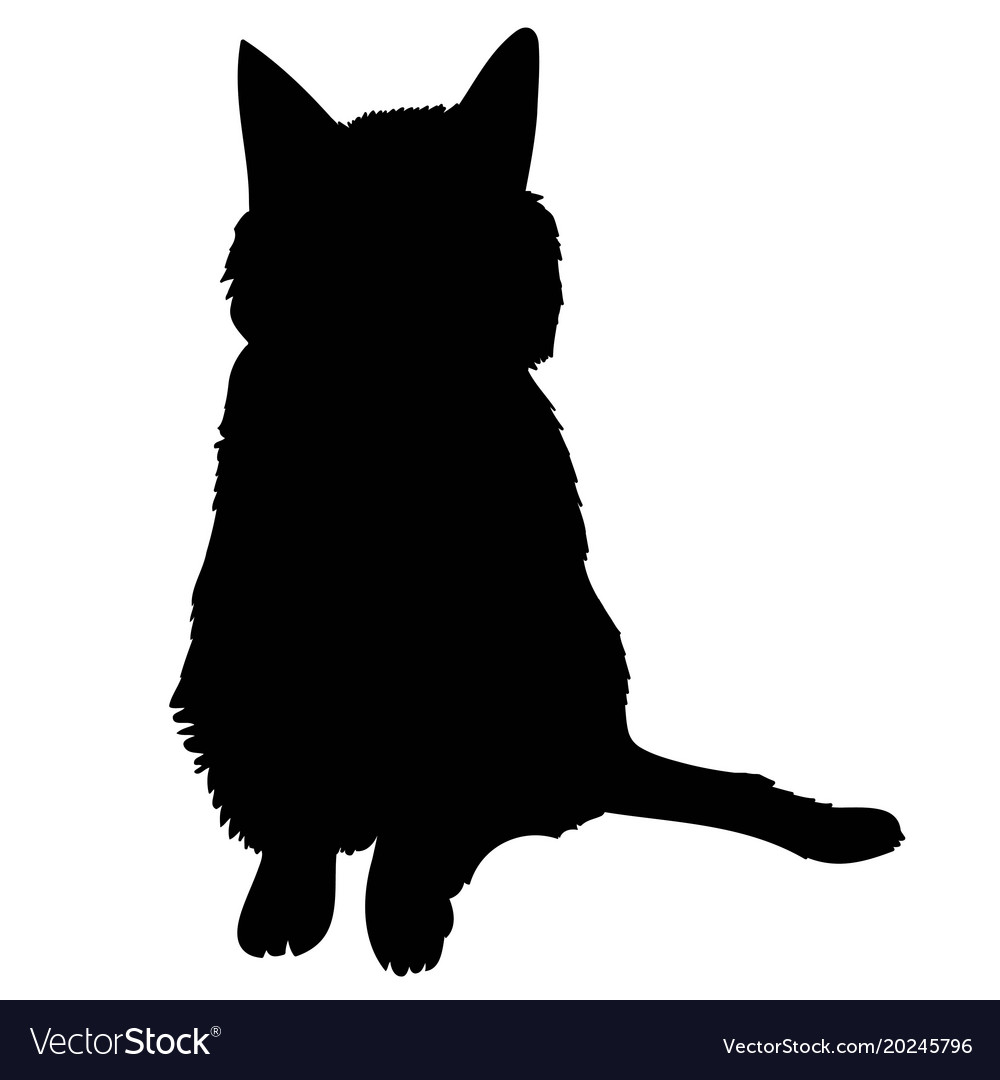 black silhouette cat sitting sideways isolated vector image