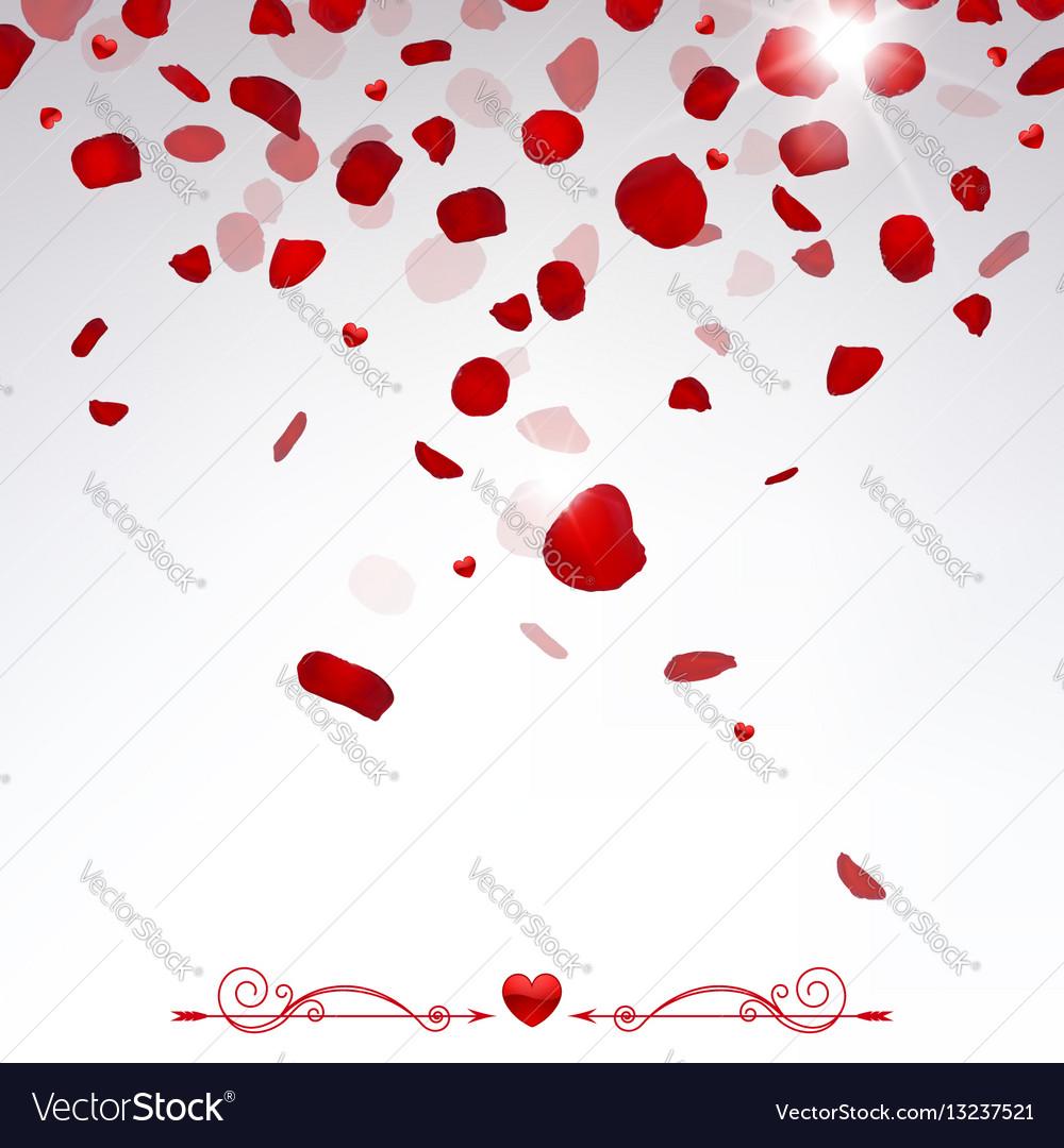 confetti falling rose petals