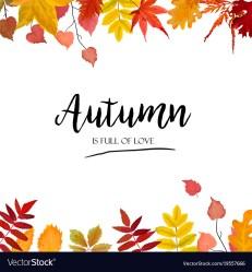 border leaf vector autumn season card floral fall vectorstock source