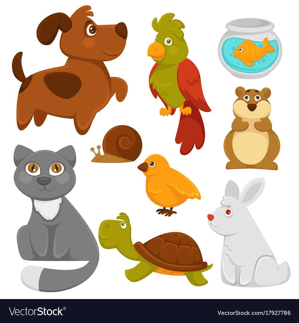 cartoon pets domestic animals