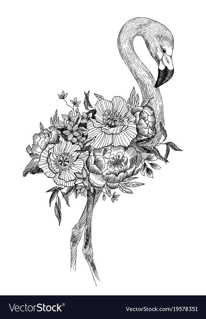 drawing bird flamingo with