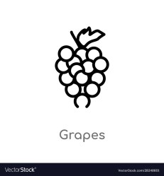 Outline grapes icon isolated black simple line Vector Image