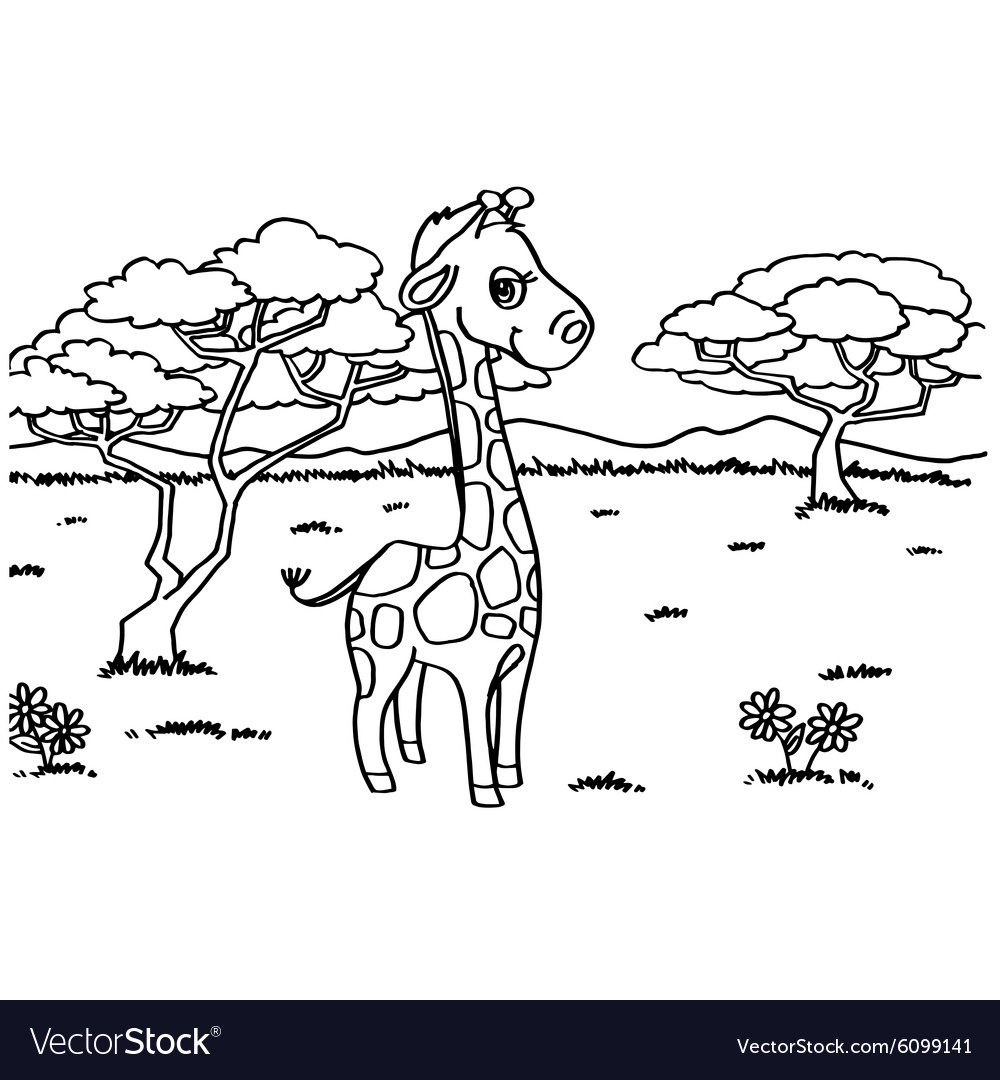 Giraffe Coloring Pages Royalty Free Vector Image