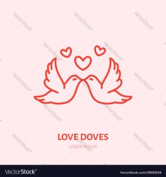 kissing doves two flying birds in vector image [ 1000 x 1080 Pixel ]