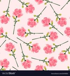 Pink carnation flower on pink background Vector Image