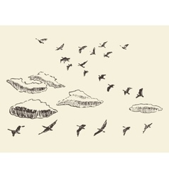 Flying Birds Sketch Vector Images Over 6 200