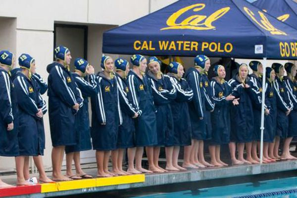 Cal Bears Women's Water Polo