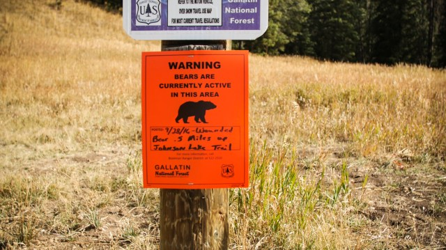 Photo of a warning sign. Sign reads: 'Warning Bears are currently active in this area.'