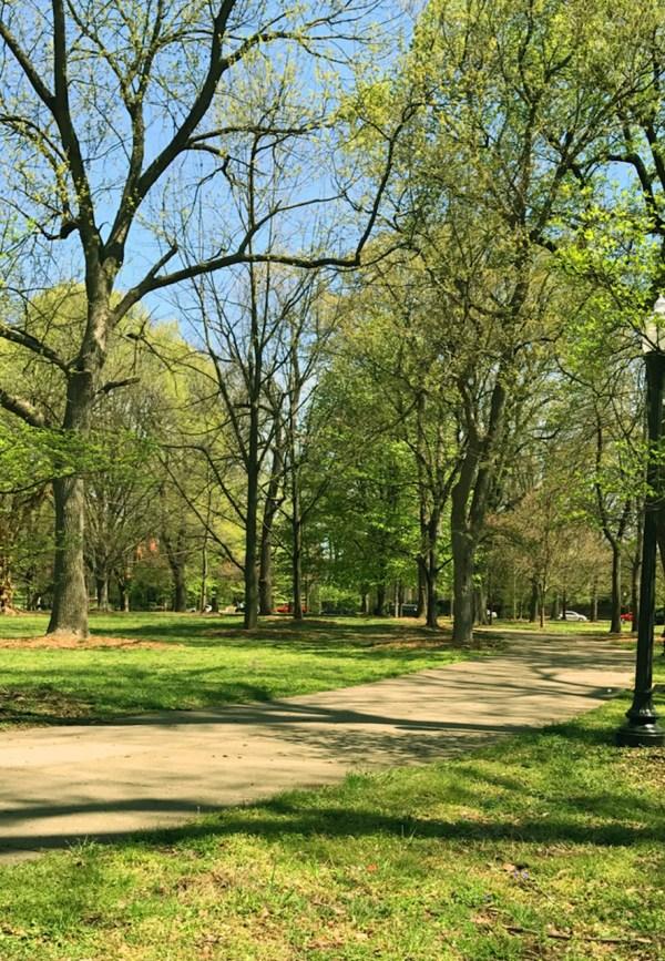 SB-Louisville-Parks-Central Park.jpg