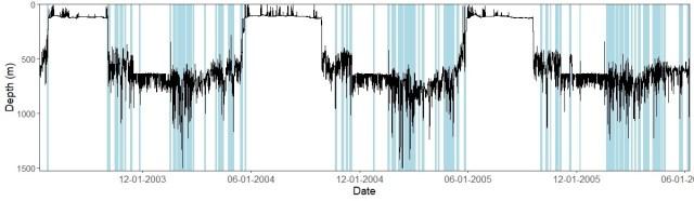 Greenland-turbot_depth-specific_behavior.jpg