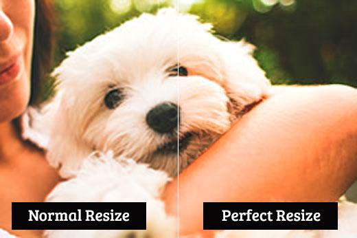 So sánh thay đổi kích thước bình thường với thay đổi kích thước hoàn hảo