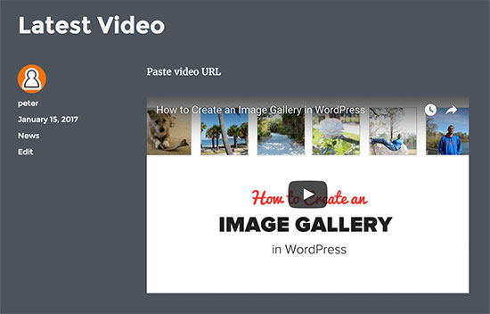 Video embedded in a WordPress blog post