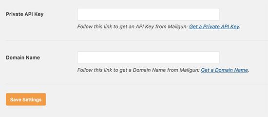 API key and domain name