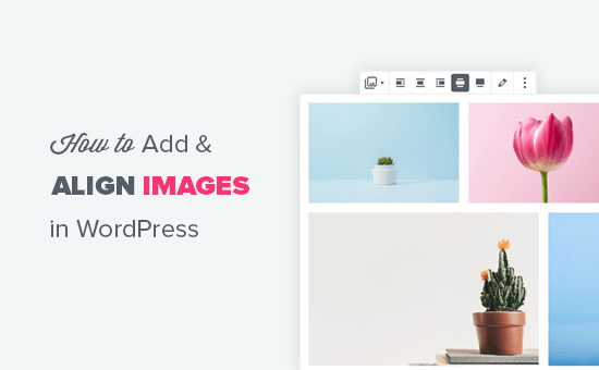 Adding and properly aligning images in WordPress