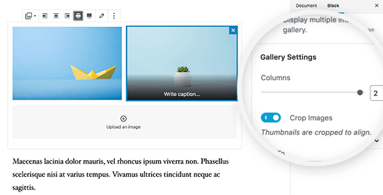 Отображение двух изображений рядом в постах и страницах WordPress