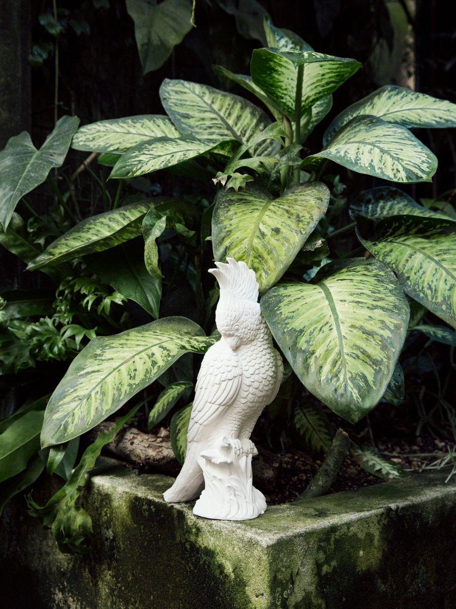 Perroquet En Cramique Par Botteganove En Vente Sur Pamono