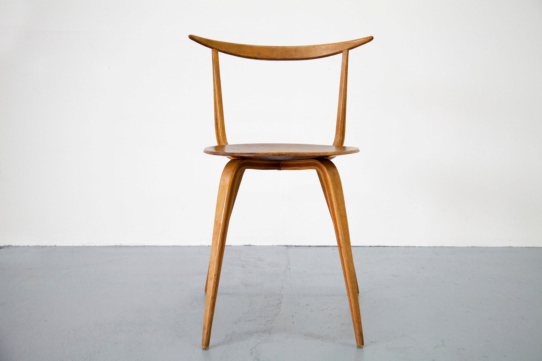 Pretzel Chair Early Version Pretzel Chair By George Nelson 1950s For