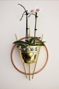 Wall-Mounted Plant Holder, 1950s for sale at Pamono