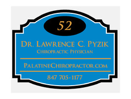 Palatine Chiropractor Dr Pyzik