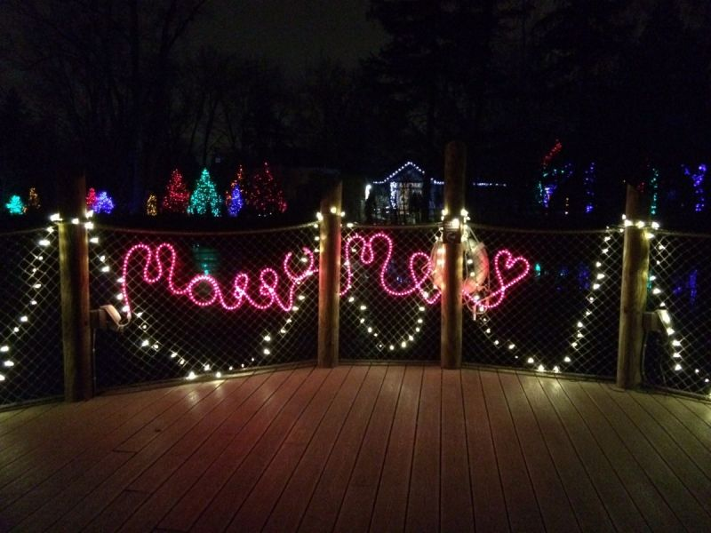 Detroit Zoo Holiday Lights Hours | Sportstle.com