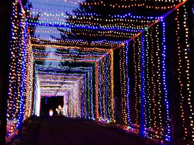 Jellystone Park Lights