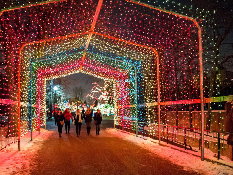Holiday Lights Best 2017 Displays In Chicagoland