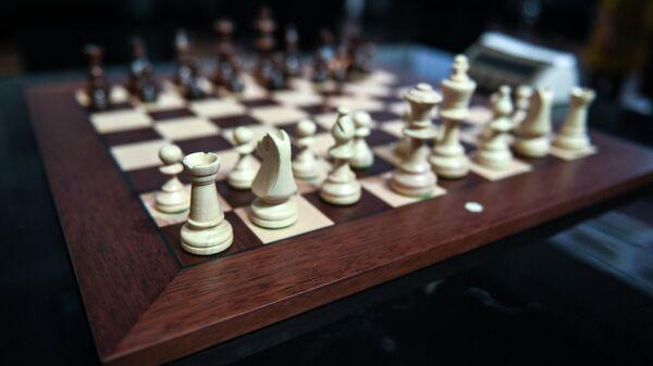 Российские шахматисты вступают в борьбу за звание чемпионов мира