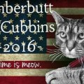 Cat for president 7 amazing cats who ran for political office