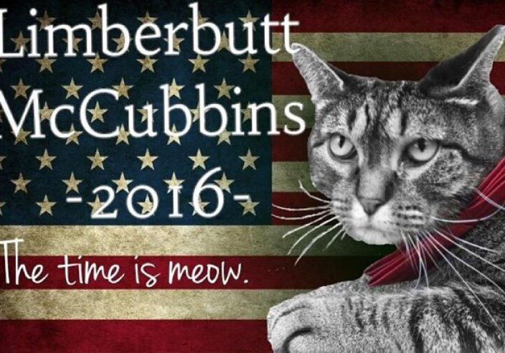 Who Is Running For President 2016