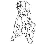 Disegno di Labrador da Colorare