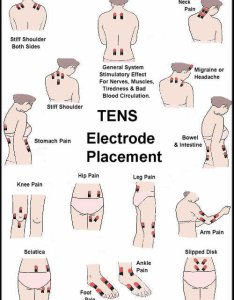 Ems pad placement charts also timiznceptzmusic rh