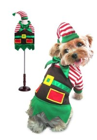 Elf Dog Costume | Elf Holiday Outfit