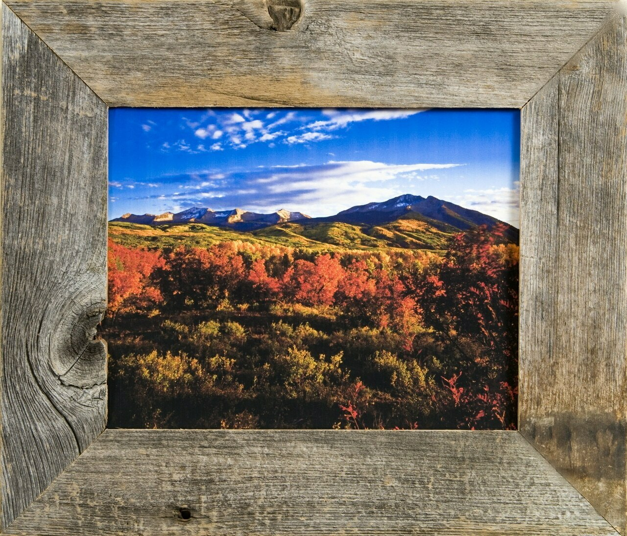 Western Frames Reclaimed Barnwood 16x20 Frame - Rustic Wood