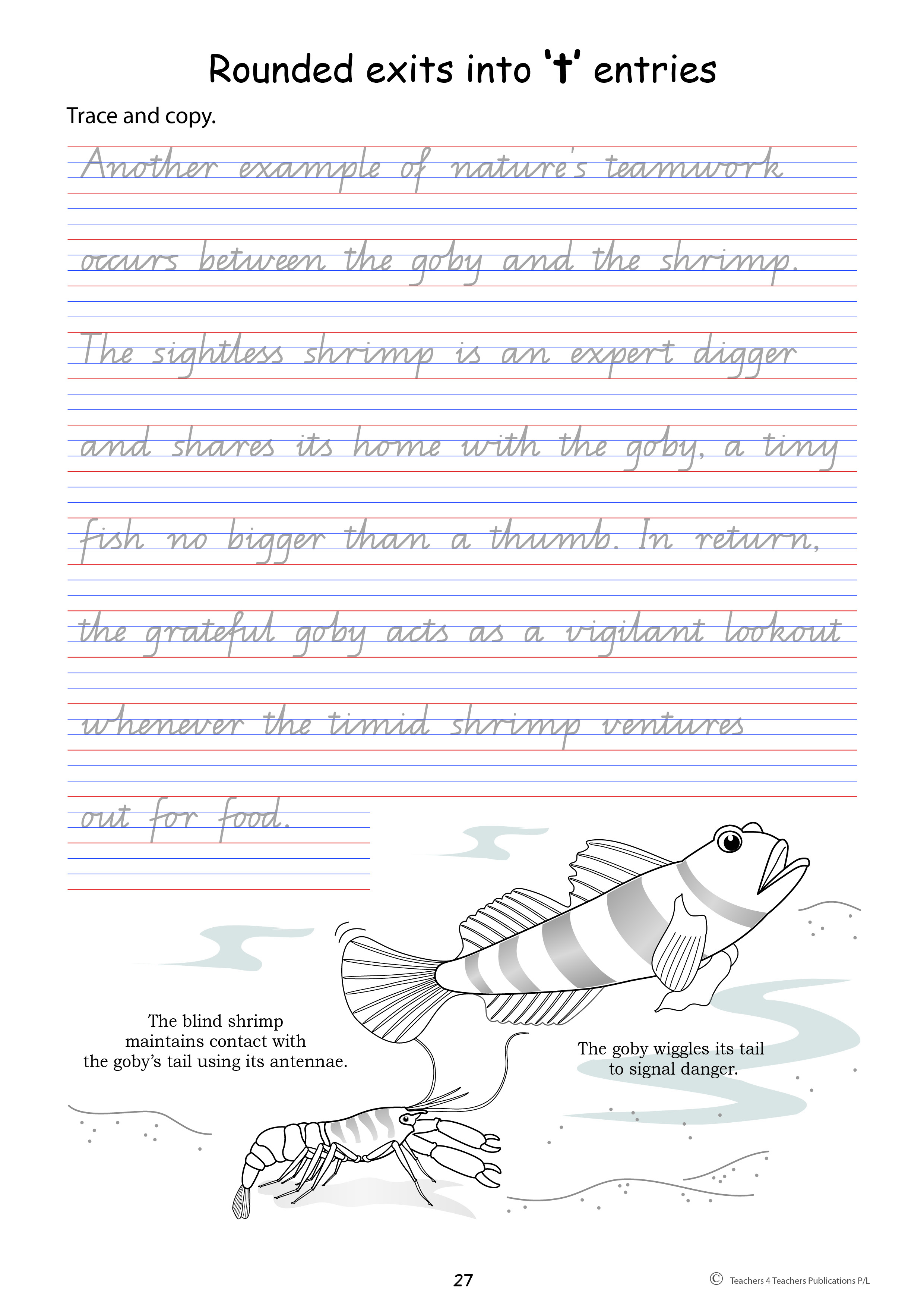 small resolution of Handwriting Activities Year 2