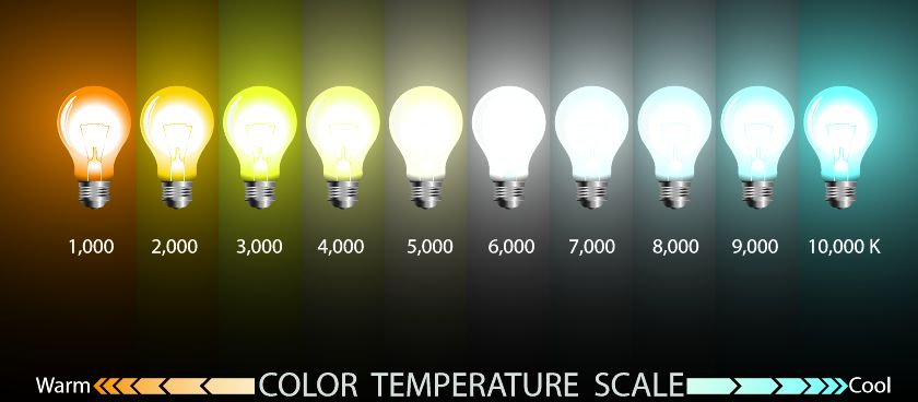 Kelvin Lighting Scale Light Bulbs