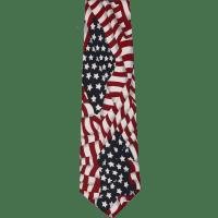 Patriotic Silk Ties