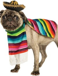 Dog Mexican Fancy Dress Costume - Fancy Me Limited