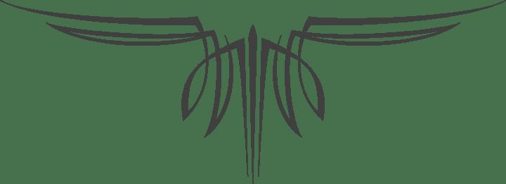 ford pinstripe kits