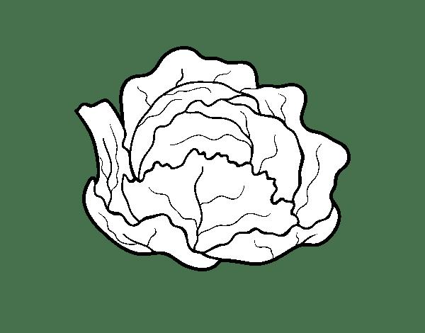 Dibujos De Pimientos Para Colorear
