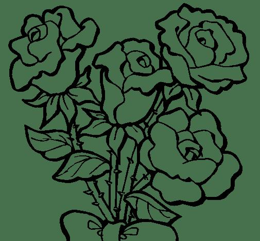 Como Dibujar Rosas. Dibujo De Rosas Rojas Vector Gratis