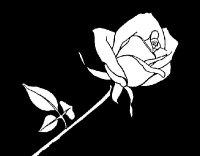 Dibujo de Rosa para Colorear - Dibujos.net