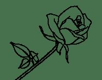 Imagenes de la rosa de Guadalupe en dibujo - Imagui