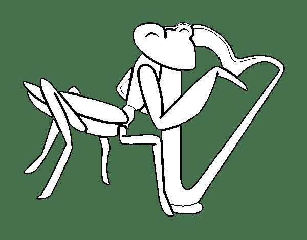 Dibujo De Saltamontes Con Arpa Para Colorear