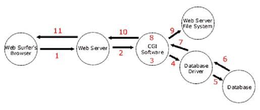 Common Gateway Interface (CGI), Environmental Variables