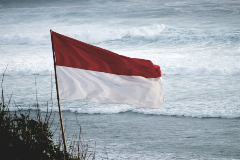 50 indonesian flag pictures