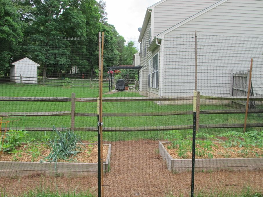 How to Build a DeerProof Garden Fence  House Tipster