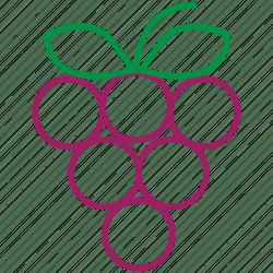 Food fruit grapes outline icon Download on Iconfinder