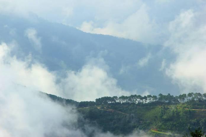 Mây ở Bản Phùng không dày đặc như Ngải Thầu hay Tà Xùa, chỉ lãng đãng giăng ngang đầu núi, thoắt ẩn thoắt hiện.