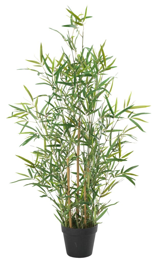 Kunstplant bamboe DVERGLO H90 groen  JYSK