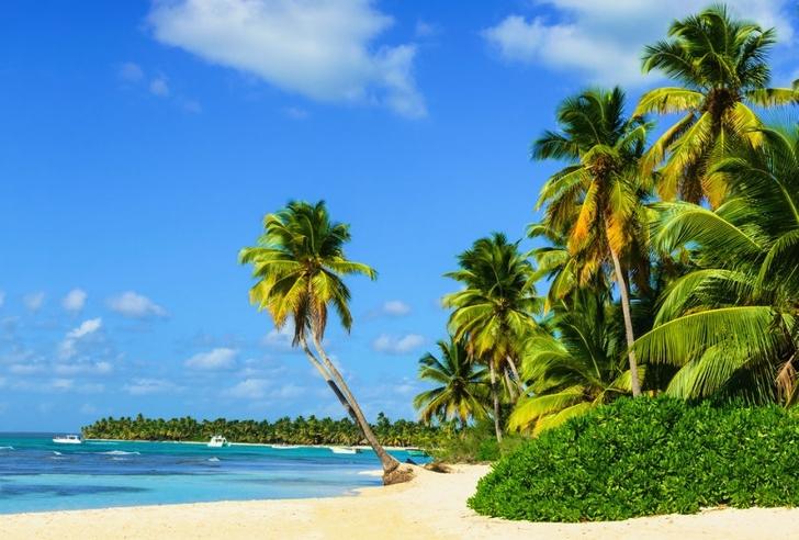 Caribe Aruba playa coronavirus vacaciones trabajo0001 - Aruba estaría ofreciendo estadías y empleos para vivir 3 meses. Lo mejor del Caribe, a su alcance